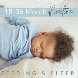 9 300x300 - 18 - 36  Months -  Feeding and Sleep Routines